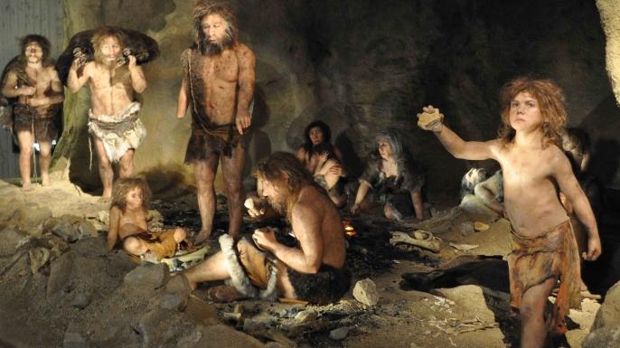 كيف تم اكتشاف أن اجتماع الرجل بالمرأة يؤدي للإنجاب