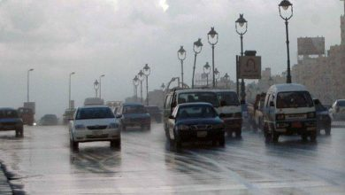 طريق مصر إسكندرية الزراعى