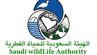 الهيئة الوطنية لحماية الحياة الفطرية