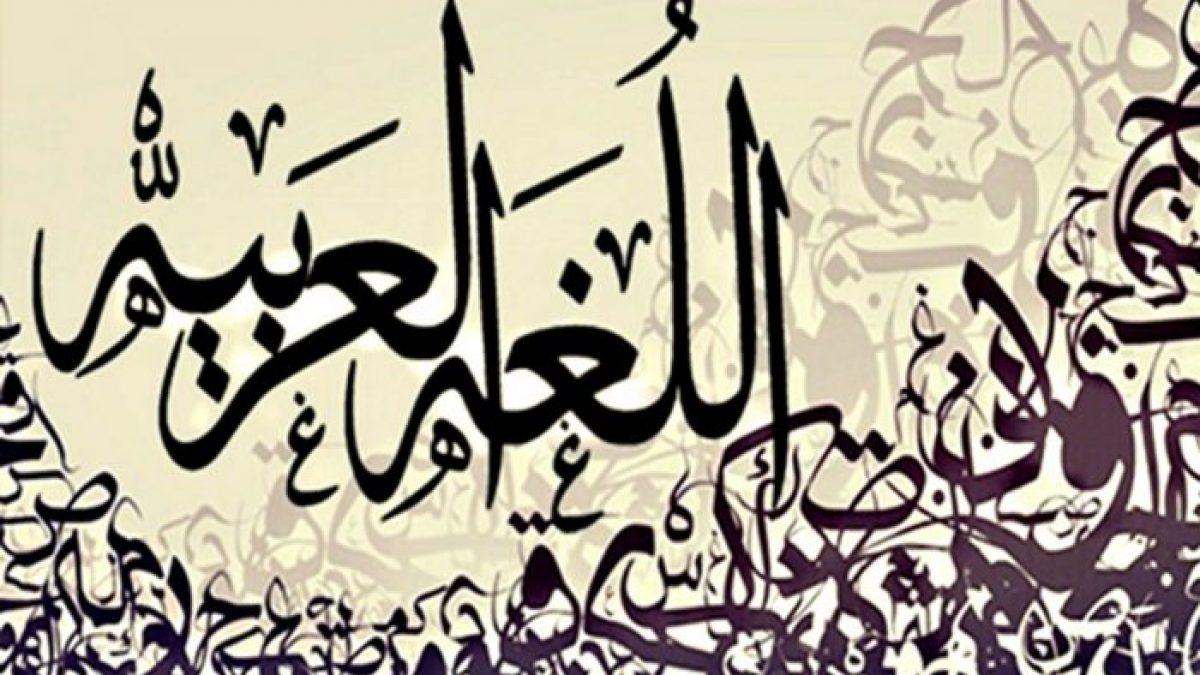 مطوية عن اللغة العربية جاهزة للطباعة