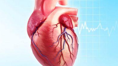 اهم المعلومات عن مرض القلب لدي الشباب واسباب الاصابة به