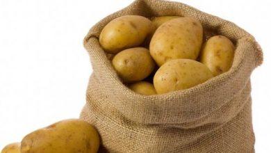 أزمة البطاطس