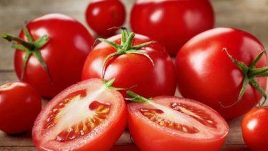 «هتاكلهم براحتك».. تعرف على أكلات لا تسبب زيادة في الوزن