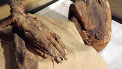 تعرف على سبب تسمية حاكم مصر «ملك» وليس «فرعون» في سورة يوسف فقط !