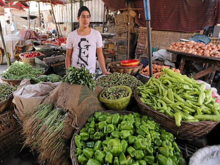 أبرزها «ارتفاع البطاطس والبصل والكوسة».. تعرف على أسعار الخضروات في سوق العبور اليوم الأربعاء 28-11-2018