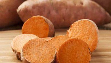 تعرف على فوائد وأضرار تناول البطاطا في فصل الشتاء