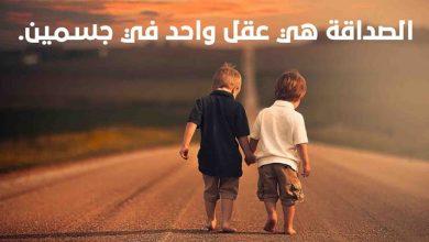 اقتباسات نزار قباني عن الصداقة