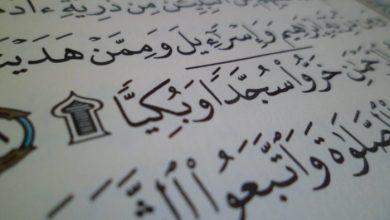 هذا ما يجب أن نفعله عندما نمر بآية سجدة في قراءة القرآن ؟