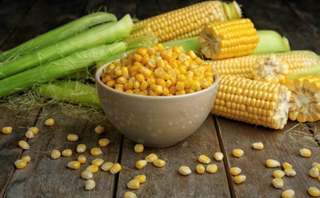 وقاية من الأمراض المزمنة.. تعرف على فوائد الذرة