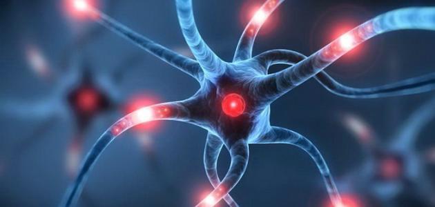 ادوية كهرباء المخ
